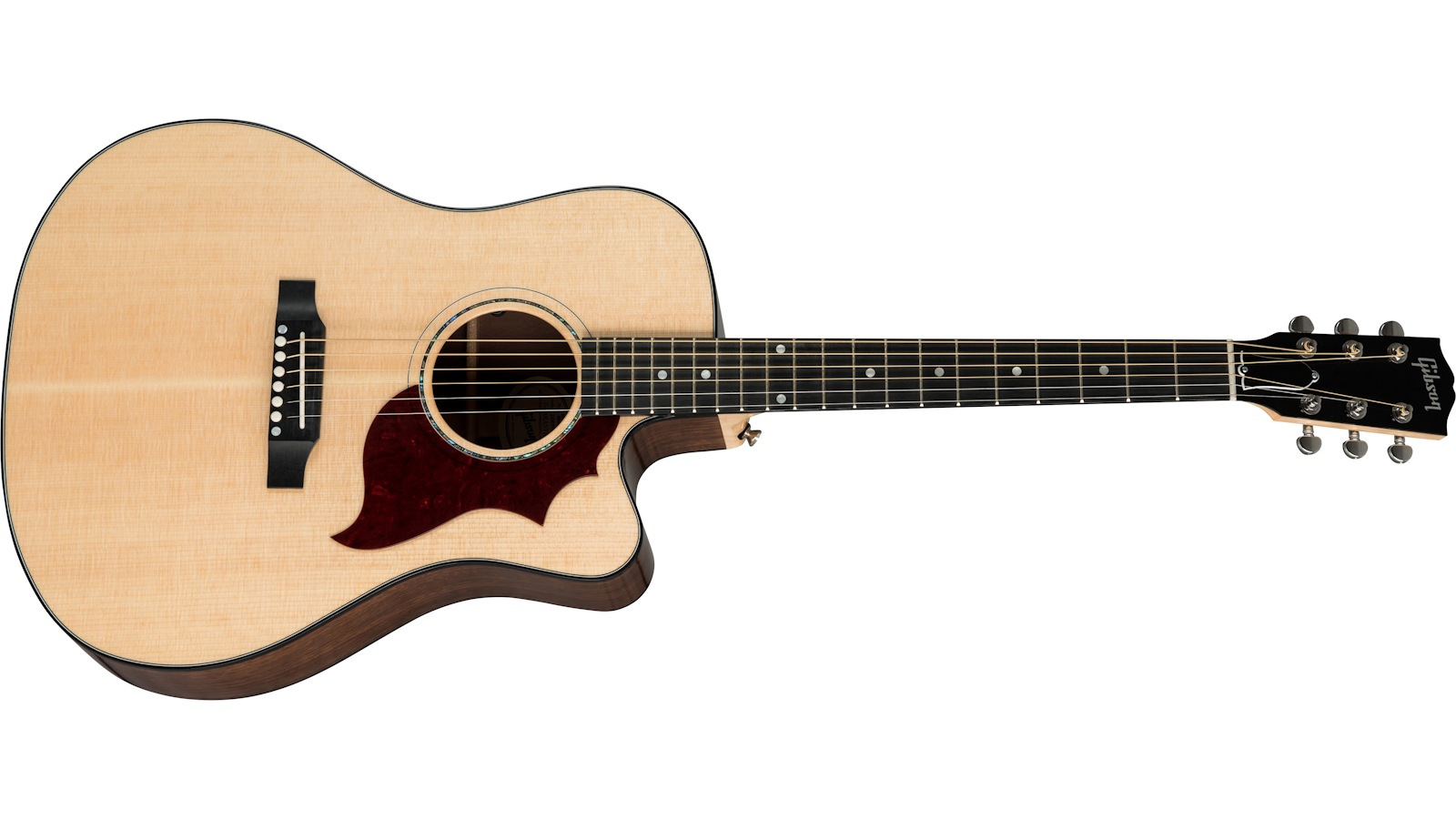 Hummingbird Walnut M 2019