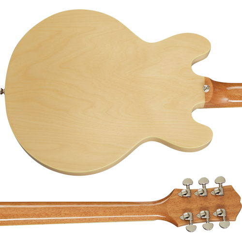ES-339 Back and Neck